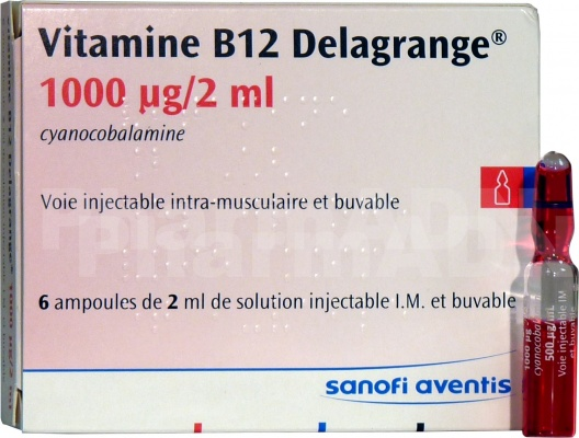 Vitamine b12 delagrange 1000 µg/2 ml